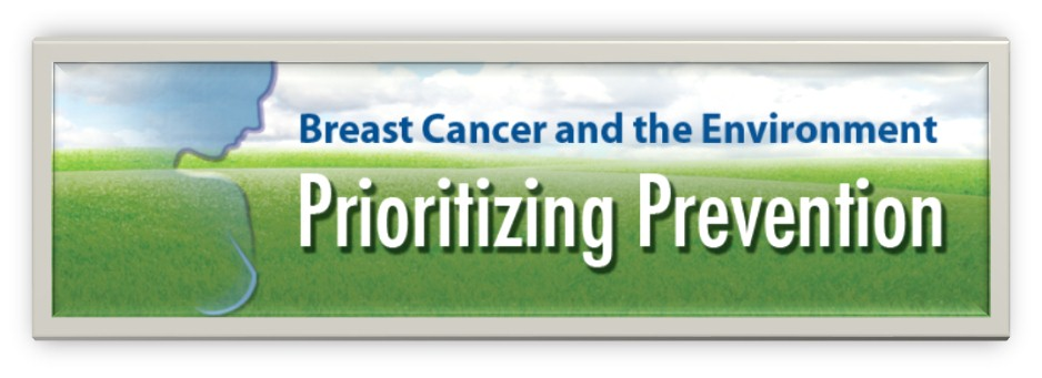 021713 0101 BreastCance1 Breast Cancer and Environment  The latest in Integrative Medicine Confirmation