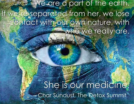 You Can Purchase Downloads of All 30+ Lectures of the Detox Summit