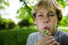 Allergies: Serious Hidden Health Risk for Obese Children